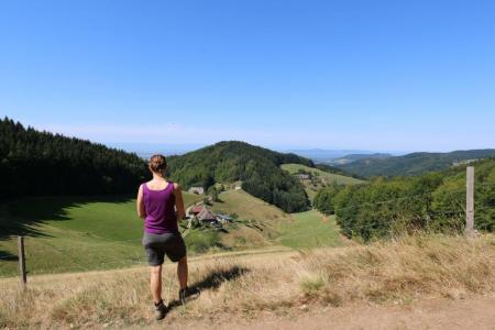Escursioni sul Westweg