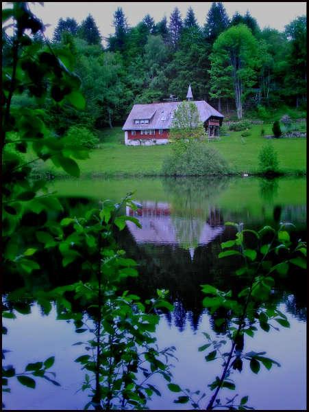Monastery pond near Dachsberg-Horbach.