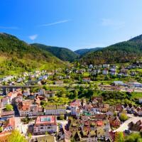 Blick über Hornberg