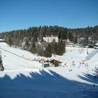مصعد التزلج Notschrei