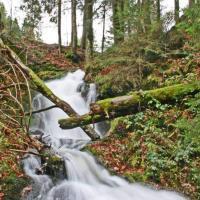Todtmoos waterfalls