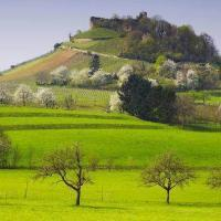 Staufen Castle in het voorjaar © Erich Spiegelhalter / TI Staufen