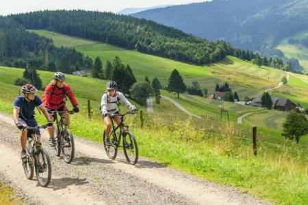 Auf dem Mountainbike im Schwarzwald