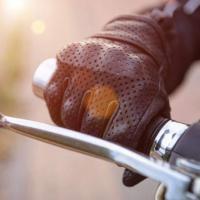 Motocyclistes en Forêt-Noire