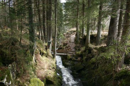 Am Albsteig - Menzenschwander Wasserfall