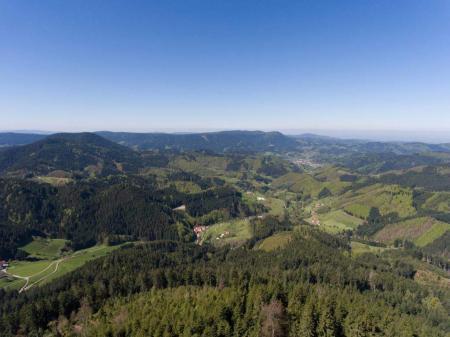 Schwarzwald Landschaft bei Oppenau