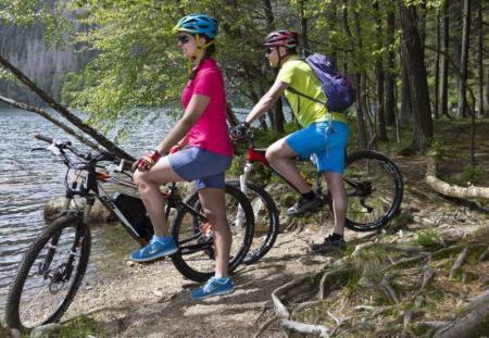 سائقي الدراجات الجبلية في Feldsee