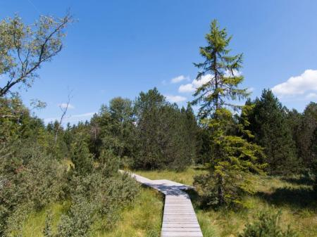 Découvrez le parc national sur la bonne voie.