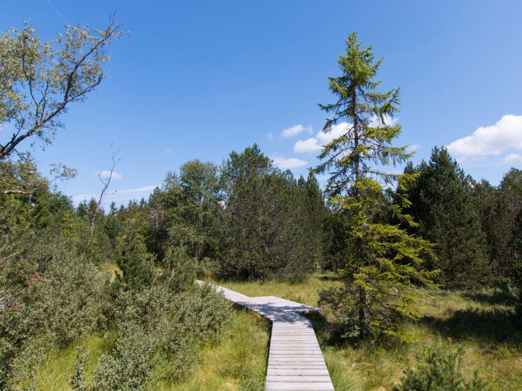 اكتشف الحديقة الوطنية على الطريق الصحيح.