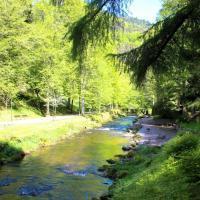 De grote Enz stroomt door Bad Wildbad