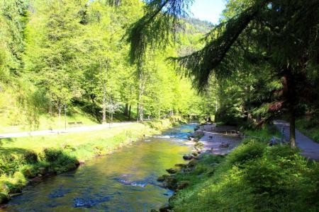 Le grand Enz coule à travers Bad Wildbad