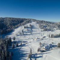 Zeller-skiliften op de Feldberg