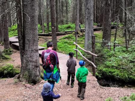Sentieri escursionistici per bambini nella Foresta Nera