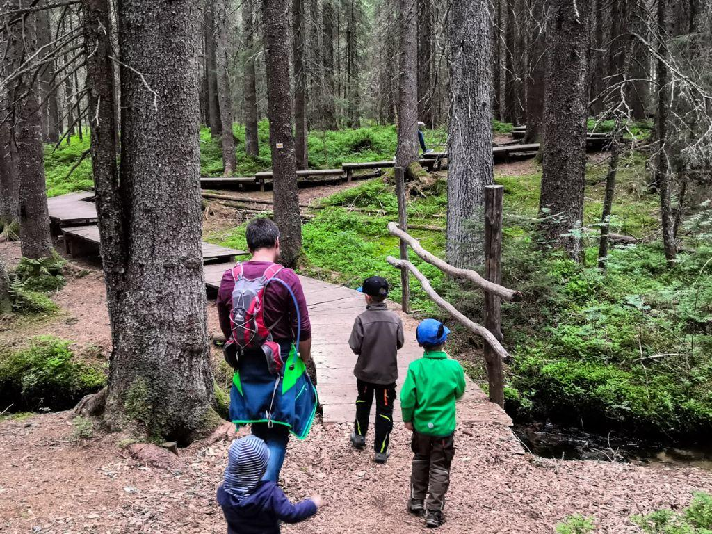 Kinderwanderwege im Schwarzwald