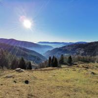 Vue sur le sud de la Forêt-Noire