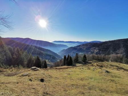 Blick über den Südschwarzwald