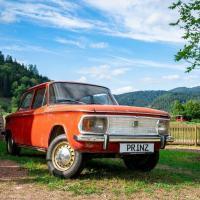 La Forêt-Noire et la voiture
