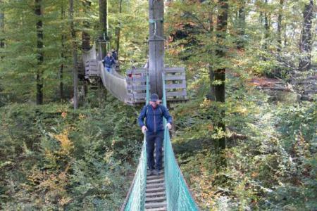 Chemin de la cime des arbres de Waldkirch
