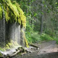Ущелье Вутах в Шварцвальде