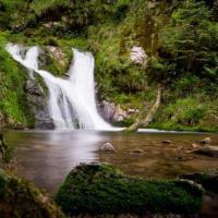 Водопады ко Дню всех святых