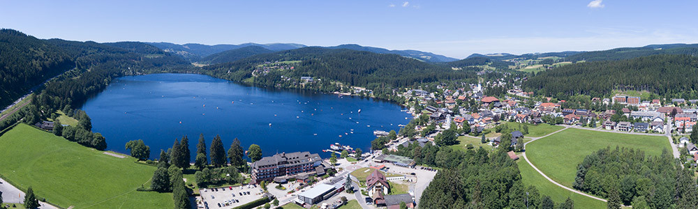 Aerial view of the Titisee