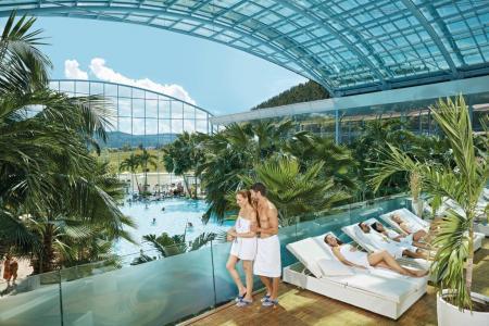 Oasis de palmiers dans le paradis aquatique de la Forêt-Noire