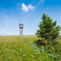 Torre Feldberg