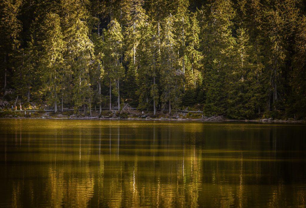 autumn, lake, reflections