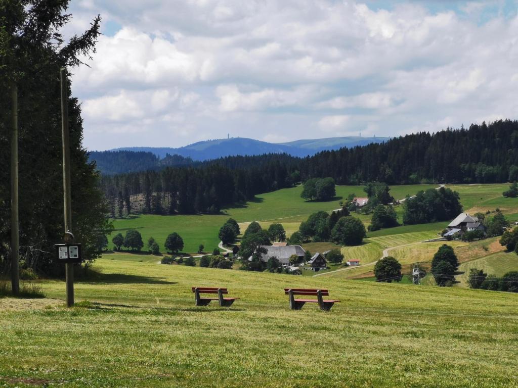 Ausblick vom Kuhberg