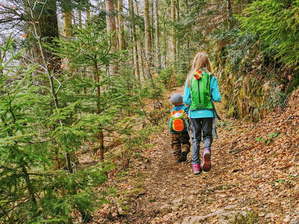 Kinder auf der Wanderung