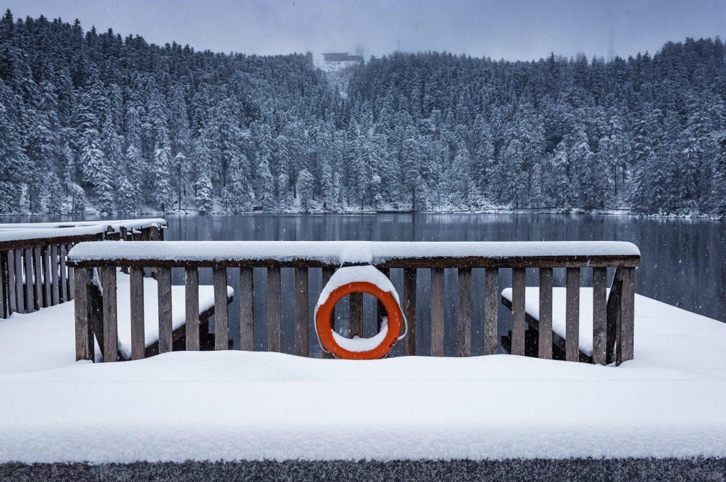 black forest, waldsee, winter