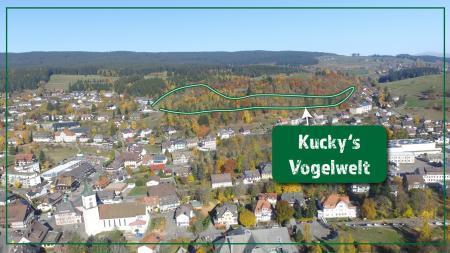 Kuckys Vogelwelt