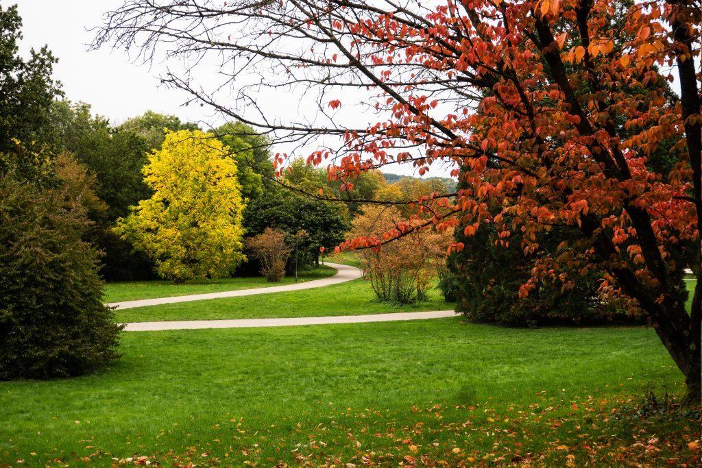 Grüttpark in Loerrach